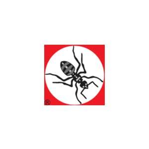 myran-logo